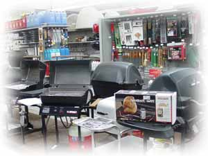 [Image of Outdoor BBQ Grills]